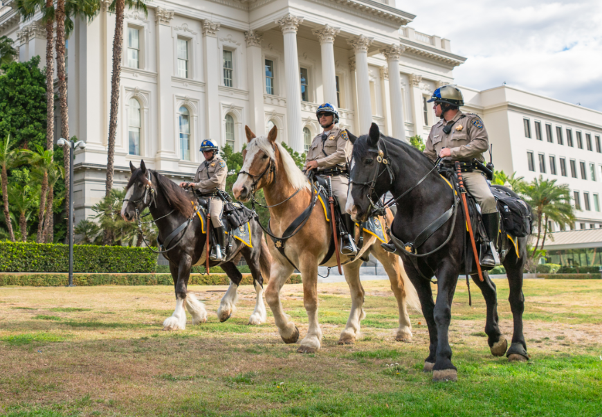 Photo Of A Mounted Patrol Unit